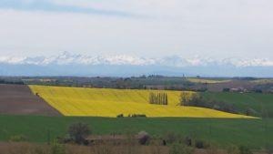 Rêveries Gasconnes Campagne_Montbrunoise_avec_vue_sur_les_Pyrénéestitle